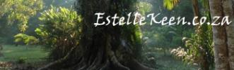 Estelle Keen - Another useful website by Kennedy COnsulting